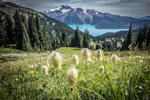 Black Tusk Trail, Whistler, Canada
