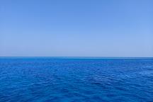 Dolphin House - Sha'ab Samadai Reef, Marsa Alam, Egypt