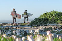 Stoked School of Surf, Cape Town Central, South Africa