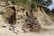 Cape Arago State Park, Coos Bay, United States
