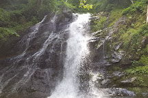 Jones Run Falls Trailhead, Shenandoah National Park, United States