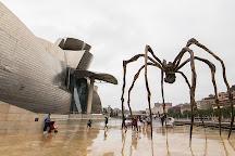 Guggenheim Museum Bilbao, Bilbao, Spain