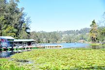 Kodaikanal Lake, Kodaikanal, India