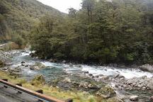 Fiordland National Park (Te Wahipounamu), Te Anau, New Zealand