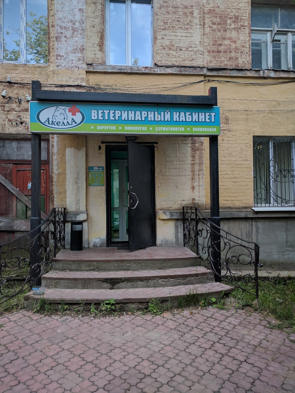 """Фото Ковров: Ветеринарный кабинет """"Акелла+"""""""
