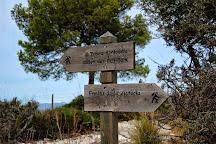 Talaia D'Alcudia, Alcudia, Spain