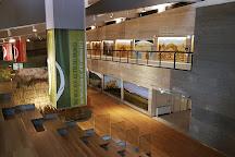 Museo Nazionale del Paleolitico, Isernia, Italy