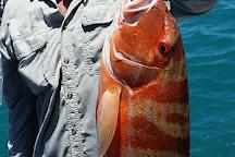 Fish Broome, Broome, Australia