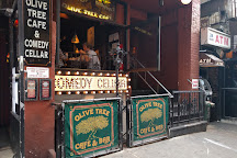 Comedy Cellar, New York City, United States