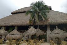 Delphinus Xcaret, Playa del Carmen, Mexico