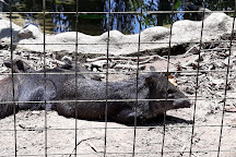 Zoologico la isla del Tapir, Santo Domingo de los Colorados, Ecuador