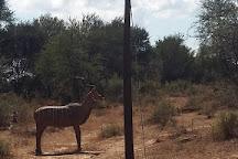 Archer's Land, Windhoek, Namibia