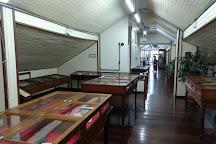 Museum of Man of Sambaqui Pe. Joao Alfredo Rohr, S.J., Florianopolis, Brazil