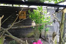 Shorelands Wildlife Gardens, Diss, United Kingdom
