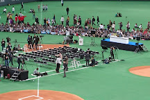 Sapporo Dome, Sapporo, Japan