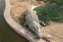 Rak Zoo, Ras Al Khaimah, United Arab Emirates