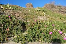 Oasi Naturista, Lido di Ostia, Italy