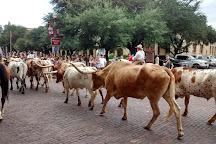 Fort Worth Herd, Fort Worth, United States