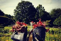 Durham University Botanic Garden, Durham, United Kingdom