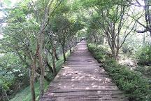 Izunokuni Panorama Park, Izunokuni, Japan