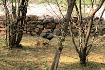 Ranthambore Tiger Reserve, Ranthambore National Park, India