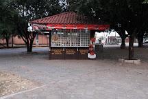 Natural History Museum of Alta Floresta, Alta Floresta, Brazil