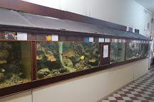 Aquarium Musée d'Arcachon, Arcachon, France