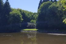 Dun A Ri Forest Park, Kingscourt, Ireland