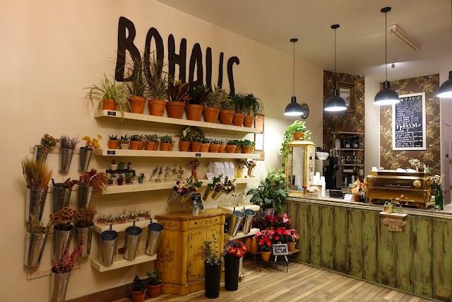 Bohaus