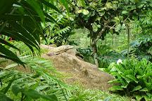 Parque Reptilandia, Dominical, Costa Rica