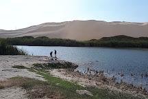 Moron Oasis, Pisco, Peru