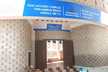Varkala Aquarium, Varkala Town, India