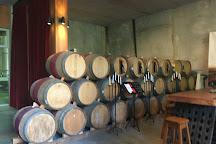 Trinity Hill Winery, Hastings, New Zealand