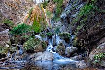 Limekiln State Park, Big Sur, United States