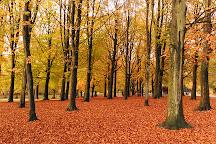 Bois de la Cambre, Brussels, Belgium