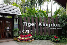 Tiger Kingdom, Mae Rim, Thailand