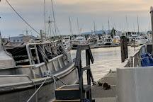 Mystic Sea Charters, Anacortes, United States