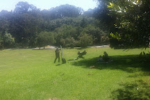 Regional Parks Botanic Garden, Berkeley, United States