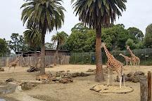 Oakland Zoo, Oakland, United States