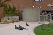 New Brunswick Aquarium and Marine Centre, Shippagan, Canada
