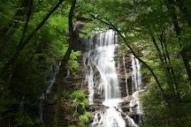 Horsetrough Falls, Helen, United States