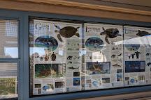 Huntington Beach State Park, Murrells Inlet, United States