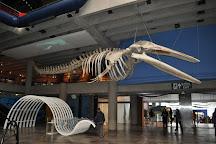 Museu de Ciencias e Tecnologia da PUCRS, Porto Alegre, Brazil