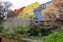 Dubh Linn Gardens, Dublin, Ireland
