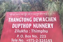 Thangthong Dewachen Nunnery, Thimphu, Bhutan