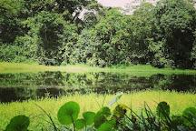 Finca Cantaros, San Vito, Costa Rica