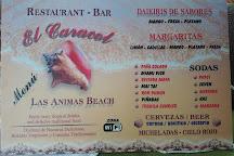 Playa Las Animas, Cabo Corrientes, Mexico