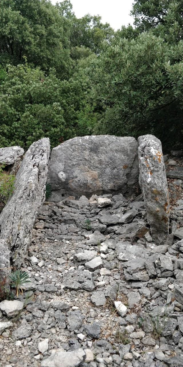 Dolmen du Bois des Géantes