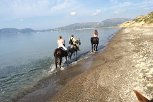 Laganas Horse Riding Center, Zakynthos, Greece