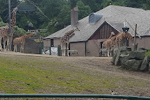 Belfast Zoo, Newtownabbey, United Kingdom
